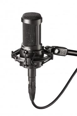 Конденсаторный микрофон Audio-Technica AT2050